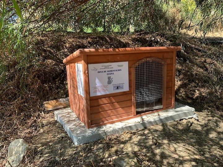 Cat Feeding Station ChicoColin
