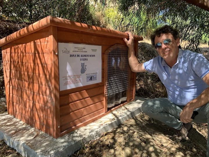 Cat Feeding Station - Eugenio