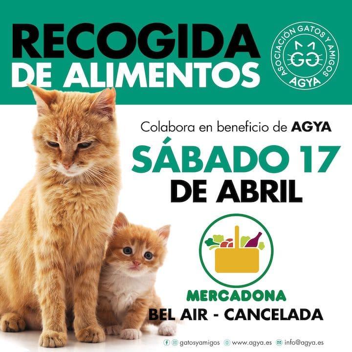 20210417-Mercadona-Cancelada