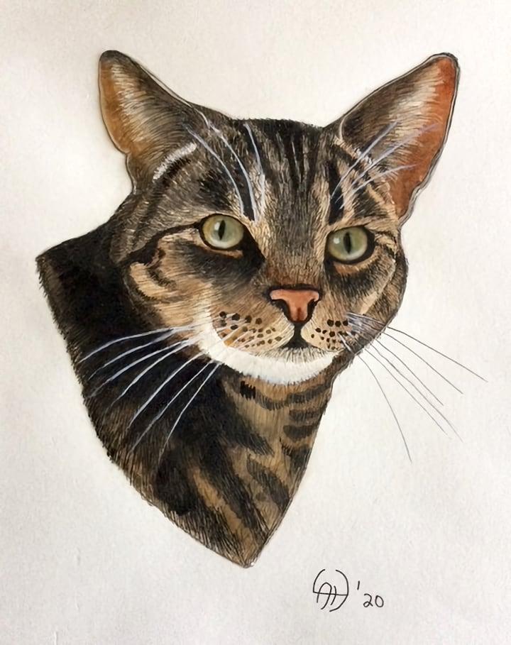 linda-cat-brown